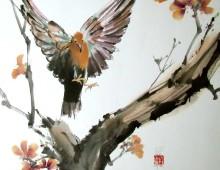 Dove Landing