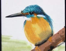 King Fisher 6×6″