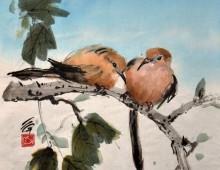 Doves Talking