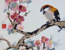 Sparrow and Spring flowers